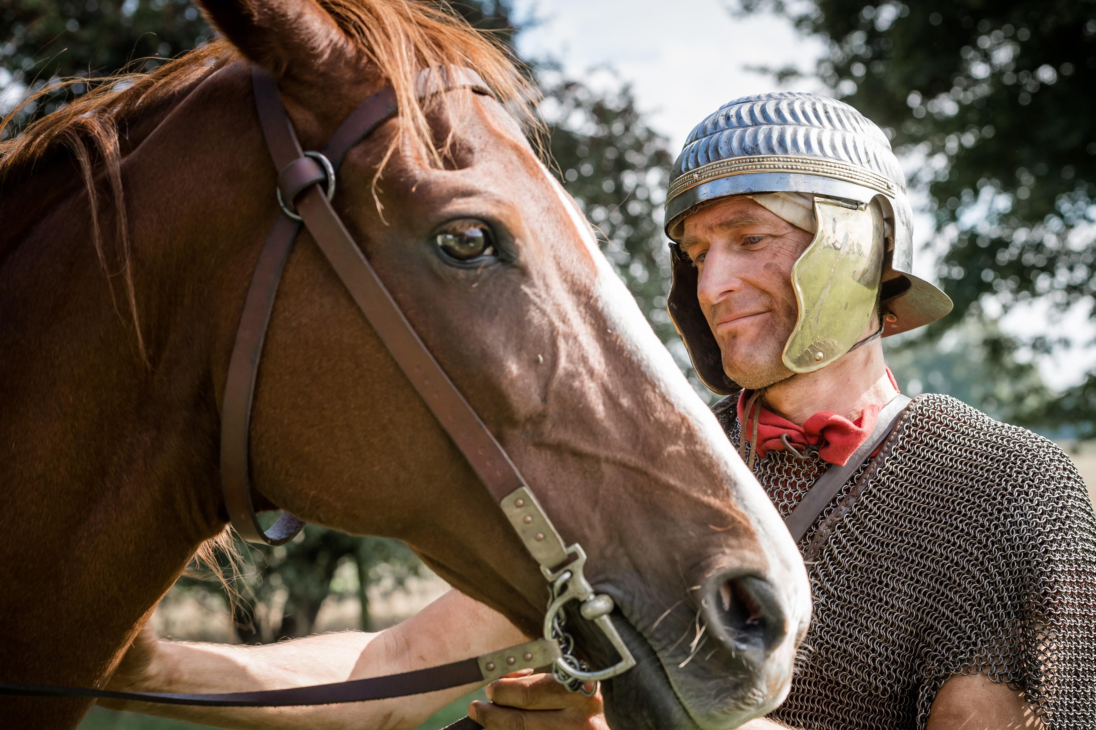 adrian's Cavalry web content - horse
